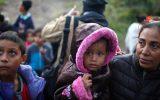 شورای اروپا مجارستان را به نقض حقوق بشر و محروم کردن پناهجویان از غذا متهم کرد