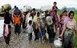 عدم تمایل مسلمانان روهینجایی برای بازگشت به میانمار
