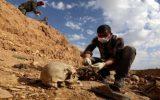 کمیساریای حقوق بشر عراق: ۲۰۰ گور دستهجمعی از قربانیان داعش در عراق وجود دارد