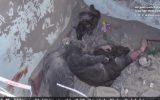 ۱۷ کشته و بیش از ۵۰ زخمی طی ۲ انفجار در افغانستان