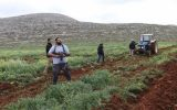 افزایش محدودیت فلسطینی ها برای ساخت و ساز در کرانه باختری
