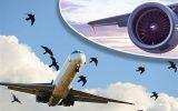 ممانعت تونس و الجزایر از عبور هواپیمای رژیم صهیونیستی