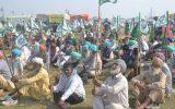 افزایش فشار کشاورزان هندی دولت این کشور را مجبور به مذاکره کرد
