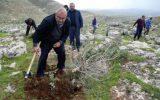 فلسطینیها در پاسخ به جنایت صهیونیست ها، درختان جدید می کارند