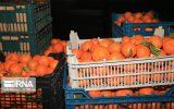 نخستین محموله نارنگی از پاکستان وارد سیستان وبلوچستان شد